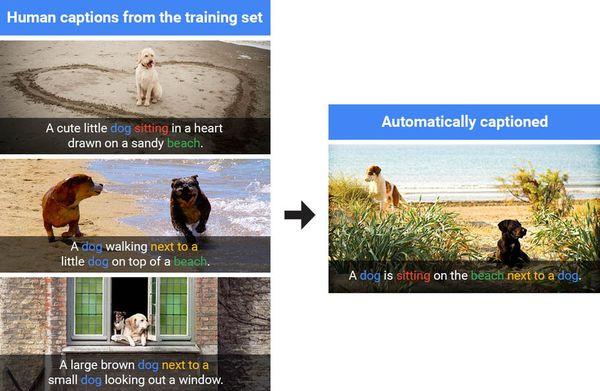 Google mở mã nguồn thuật toán nhận diện vật thể trong ảnh với độ chính xác 93,9%
