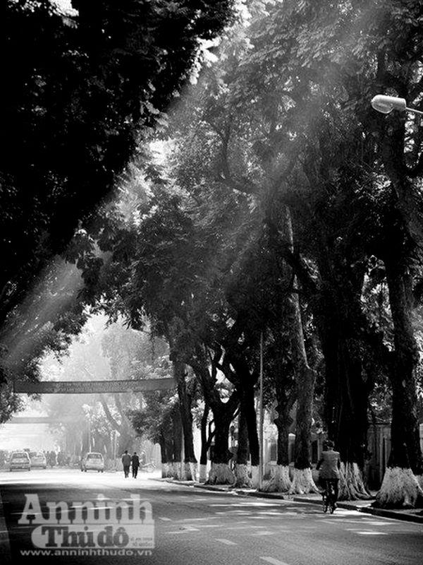 Ngắm mùa thu Hà Nội tuyệt đẹp qua những bức ảnh đen trắng