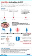 Virút Zika: Những điều cần biết