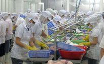 Tiền Giang khai thác hiệu quả các khu công nghiệp, cụm công nghiệp