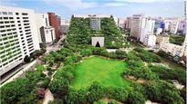 10 khu vườn trên cao đẹp nhất thế giới