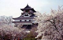 Nhật Bản: Hoài cổ mà vẫn hiện đại