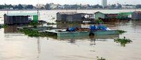 Tiền Giang: Cá chết bất thường tại làng bè Thới Sơn