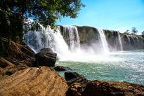 Đến Đắk Nông khám phá rừng Nậm Nung