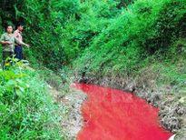 Tin nóng: Xác định thủ phạm gây ra 'dòng suối máu' ở Điện Biên