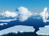 Đoàn khảo sát Nga – Mỹ sẽ xác định biến đổi khí hậu tại Bắc cực