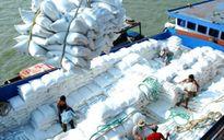 """Xuất khẩu lúa gạo đang bị giấy phép """"trói chân""""?"""