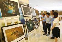 Liên hoan ảnh nghệ thuật khu vực Nam Trung Bộ-Tây Nguyên lần thứ 20