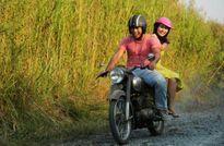Phim điện ảnh Việt: Nhạt nhẽo và nhàm chán
