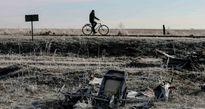 Chuyên gia tình báo Mỹ: Bí mật về máy bay MH17 sẽ mãi mãi bị chôn vùi
