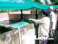 Báo động về nạn trộm cắp cá sấu