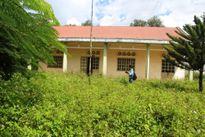Gia Lai: Trường học tiền tỷ bị bỏ hoang trách nhiệm thuộc ai?