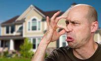 """Tuyệt chiêu """"hô biến"""" đủ loại mùi hôi trong nhà bạn"""