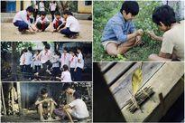 Một thời 'hoa vàng, cỏ xanh' của hot girl Việt