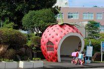 Những trạm xe buýt trái cây siêu đáng yêu chỉ có ở Nhật Bản