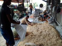 Ruốc bẩn độn bột mì, tẩm phụ gia Trung Quốc: Đến người làm cũng không dám ăn!