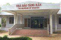 Khám phá bảo tàng Rắn độc nhất vô nhị Việt Nam