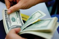 Giá USD/VND hôm nay 12/11: Biến động nhẹ