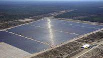 Australia đẩy mạnh sản xuất điện từ sóng biển