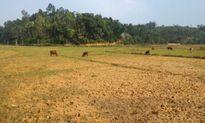 Huyện Tam Nông (Phú Thọ): Dân điêu đứng vì mỏ khai thác quặng ở khu rừng đầu nguồn