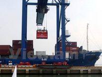 Hoàn thiện Báo cáo nghiên cứu khả thi dự án Cảng trung chuyển ĐBSCL