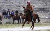 """Clip: Chủ """"mã vương"""" đất Bắc Hà bật mí cách chọn ngựa hay"""