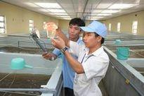 Xếp lương viên chức ngành kiểm nghiệm thủy sản theo 3 hạng