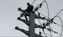 Chàng trai trèo lên cột điện sau khi cãi nhau với bạn gái
