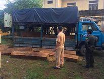 Bắt một xe tải chở gần 3m3 gỗ đỏ quý hiếm