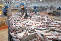 Thứ trưởng Bộ Công Thương Trần Quốc Khánh: Hiệp hội Cá tra đang cân nhắc khởi kiện Mỹ ra WTO