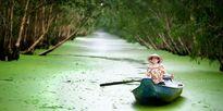 Miền Tây đẹp lạ lùng khi nước nổi!