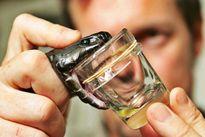 Đây là vũ khí khủng khiếp nhất của mọi loài rắn độc