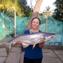 Ngư dân liên tiếp bắt được cá 'khủng' ở sông Đồng Nai