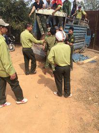 'Tập đoàn' côn đồ hung hãn tấn công kiểm lâm vì dám thu gỗ