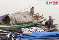 Rét đậm gây thiệt hại 14 tỷ đồng cho nuôi trồng thủy sản