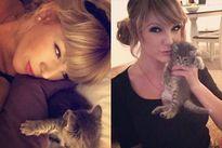 """Dân mạng ngã ngửa khi phát hiện """"bản sao của Taylor Swift"""""""