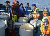 Tin tức pháp luật ngày 31/1: Bộ Công an bắt giữ hơn 13.000 tấn xăng lậu ở Bình Thuận