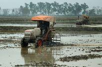 Nâng cao chất lượng sống của người nông dân: Nhân tố cốt lõi