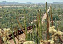 Mỹ - Mexico bắt tay bố ráp băng ma túy của trùm El Chapo
