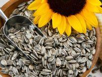 Cách chọn mua hạt dưa, hạt hướng dương an toàn trong dịp Tết