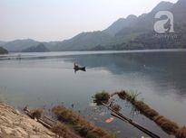 Người Hà Nội vượt nghìn cây số săn cá tiến vua dịp Tết để cầu may mắn, tài lộc