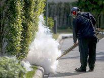 Australia, Thái Lan phát hiện trường hợp nhiễm virus Zika đầu tiên