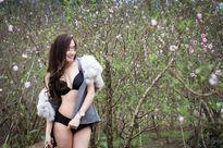 Thiếu nữ chụp ảnh nóng giữa vườn đào: Sống ảo câu like?