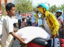 Thanh Hóa hỗ trợ 700 tấn gạo cho các hộ nghèo thuộc Chương trình 30a