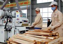 Doanh nghiệp ngành gỗ: Hội nhập càng sâu, thách thức càng lớn