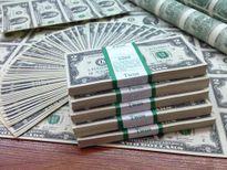 Giá USD hôm nay 4/2: Biến động không đáng kể