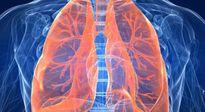Bí mật Y học HQ: Phương pháp làm sạch phổi đánh bay mọi bệnh tật