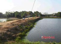 Một số biện pháp phòng chống rét cho thủy sản
