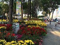 TP.HCM: Chợ hoa Tết vắng người mua