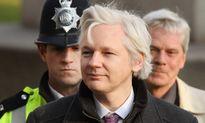 LHQ yêu cầu trả tự do và bồi thường cho ông chủ Wikileaks